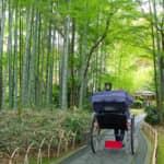 【修善寺の1日観光モデルコース】かの文豪たちが愛した温泉地!